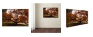 "Trademark Global Kurt Shaffer 'Autumn Japanese Maple Tree' Canvas Art - 30"" x 47"""