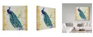 "Trademark Global Jean Plout 'Beautiful Peacock' Canvas Art - 14"" x 14"""