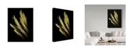 "Trademark Global Susan S. Barmon 'Decorative Grass' Canvas Art - 14"" x 19"""