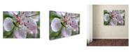 """Trademark Global Monica Fleet 'Natural Haven' Canvas Art - 14"""" x 19"""""""