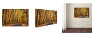 "Trademark Global Jason Shaffer 'Findlay Road' Canvas Art - 32"" x 22"""