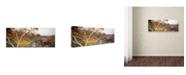 "Trademark Global David Evans 'Ormiston Gorge-NT' Canvas Art - 32"" x 10"""