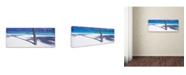 "Trademark Global David Evans 'Palm Shadow-Maldives' Canvas Art - 10"" x 32"""