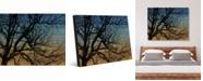 "Creative Gallery Tree Silhouette At Dusk on Wood-Pattern Portrait Metal Wall Art Print - 16"" x 20"""