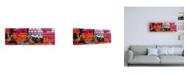 "Trademark Global Philippe Hugonnard Made in Spain 2 Colourful Blind Art II Canvas Art - 36.5"" x 48"""