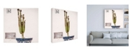 "Trademark Global Philippe Hugonnard Made in Spain 3 Spanish Terracotta Pot & Castus II Canvas Art - 19.5"" x 26"""