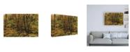 "Trademark Global Kurt Shaffer Photographs The beauty of November in Ohio Canvas Art - 36.5"" x 48"""