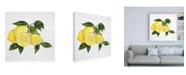 "Trademark Global Kathleen Parr McKenna Citrus Garden VI Shiplap Canvas Art - 19.5"" x 26"""