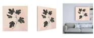 "Trademark Global Julia Purinton Botanical Study III Blush Canvas Art - 15.5"" x 21"""