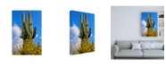 "Trademark Global Mitch Catanzaro Saguaro Canvas Art - 27"" x 33.5"""