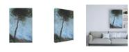 "Trademark Global Paul Baile Lone Moorland Pine Canvas Art - 15.5"" x 21"""