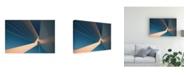 """Trademark Global Jef Van Den Golden Swan Canvas Art - 20"""" x 25"""""""