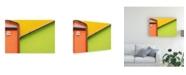 """Trademark Global Paolo Luxardo Muro Arlecchino Canvas Art - 20"""" x 25"""""""