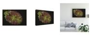 "Trademark Global Kurt Shaffer Water Lily Pad Study Canvas Art - 37"" x 49"""