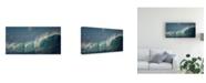 """Trademark Global Mathilde Guillemot Salt Water Machine Canvas Art - 37"""" x 49"""""""