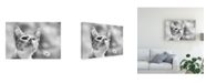 "Trademark Global Mirjam Delrue Curious Canvas Art - 15"" x 20"""