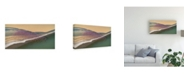 "Trademark Global John Fan Gone with the Wind Flamingo Canvas Art - 20"" x 25"""