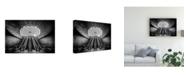 "Trademark Global Stefan Bjorn Buder Triangeln Canvas Art - 20"" x 25"""