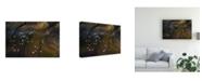 "Trademark Global Raymond Ren Rong Flying Over Lake Magadi 3 Canvas Art - 20"" x 25"""