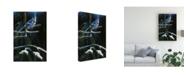 """Trademark Global Michael Budden Royal Dress Canvas Art - 15"""" x 20"""""""