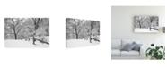 "Trademark Global Monte Nagler Snowscape Farmington Hills Michigan Canvas Art - 15"" x 20"""