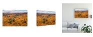 "Trademark Global Monte Nagler Autumn Palette Marquette Michigan Color Canvas Art - 15"" x 20"""