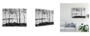 "Trademark Global Monte Nagler Birch Trees and Mist Canvas Art - 15"" x 20"""