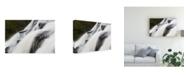 """Trademark Global Monte Nagler Up Color Canvas Art - 37"""" x 49"""""""