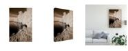 "Trademark Global Monte Nagler Forest Coastline Sepia Canvas Art - 37"" x 49"""