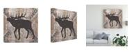"Trademark Global Vision Studio Southwest Lodge Animals I Canvas Art - 15"" x 20"""