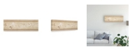 "Trademark Global Pablo Esteban White Flowers Over Beige Canvas Art - 36.5"" x 48"""