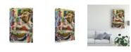 "Trademark Global Jodi Fuchs Rock Star II Canvas Art - 36.5"" x 48"""