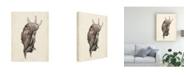 """Trademark Global Melissa Wang Watercolor Seashell IV Canvas Art - 36.5"""" x 48"""""""