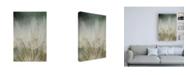 "Trademark Global Renee W. Stramel Macro Dandelion III Canvas Art - 36.5"" x 48"""