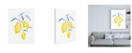 "Trademark Global Jennifer Goldberger Watercolor Lemons I Canvas Art - 19.5"" x 26"""