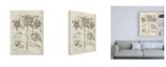 "Trademark Global Vision Studio Fresco Sunflower II Canvas Art - 27"" x 33.5"""