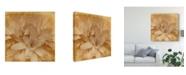 "Trademark Global Jason Johnson Halia Aloha I Canvas Art - 20"" x 25"""