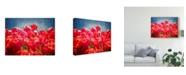 "Trademark Global Rachel Perry Fuchsia Tulips I Canvas Art - 20"" x 25"""