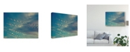 "Trademark Global Sonja Quintero Bokeh Stars I Canvas Art - 20"" x 25"""