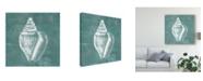 """Trademark Global Jennifer Goldberger Solitary Shell II Canvas Art - 15"""" x 20"""""""