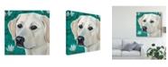 """Trademark Global Dlynn Roll Dlynns Dogs Magnolia Canvas Art - 15"""" x 20"""""""