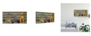 "Trademark Global Marcia Matcham Home Sweet Home Cats Canvas Art - 20"" x 25"""