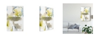 "Trademark Global Jennifer Goldberger Wandering Layers II Canvas Art - 15"" x 20"""