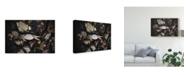 "Trademark Global Christine Sainte-Laudy Crab Shell Canvas Art - 20"" x 25"""