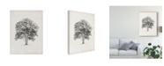 "Trademark Global Ethan Harper Vintage Arbor Study II Canvas Art - 15"" x 20"""