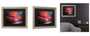 """Trademark Global Philippe Sainte-Laudy The Great Gig in The Sky Matted Framed Art - 27"""" x 33"""""""