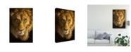 "Trademark Global Patrick Lamontagne Lion Illustration Canvas Art - 37"" x 49"""