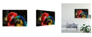 """Trademark Global Pixie Pics Colorful Macaw Couple Canvas Art - 20"""" x 25"""""""