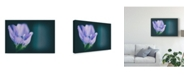 "Trademark Global Pixie Pics Macro Purple Flower Canvas Art - 37"" x 49"""