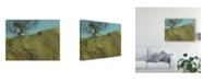 """Trademark Global Paul Bailey Gilfach Hawthorn Canvas Art - 20"""" x 25"""""""